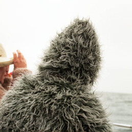 Julien Heimann - Whale Watching (3. Preis)